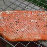 Smoked-Salmon-5288